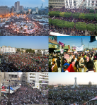 Info_box_collage_for_mena_Arabic_protests