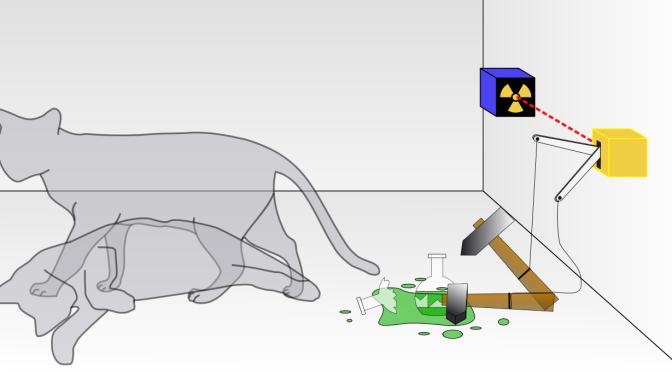 Wikipedia IV: Schrödinger's cat in popular culture